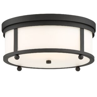 Darby Home Co Barnaby 3-Light Outdoor Flush Mount