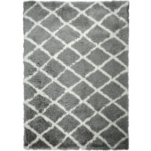 Best Reviews Paramount Gray/White Area Rug By ELLE Home