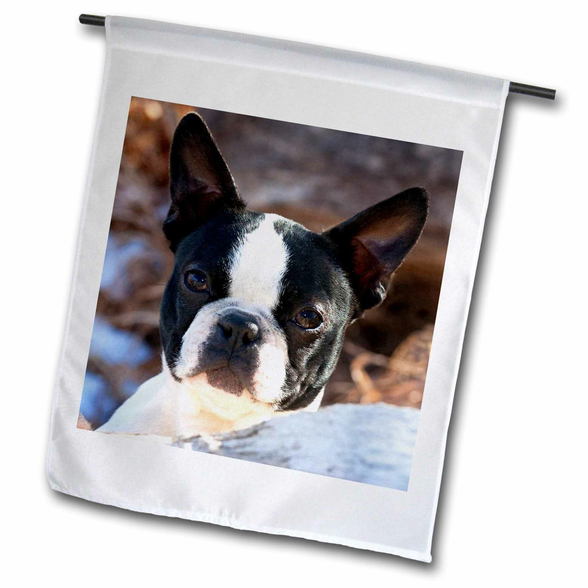 SWEN Products FRENCH BULLDOG Light Switch Plate Covers