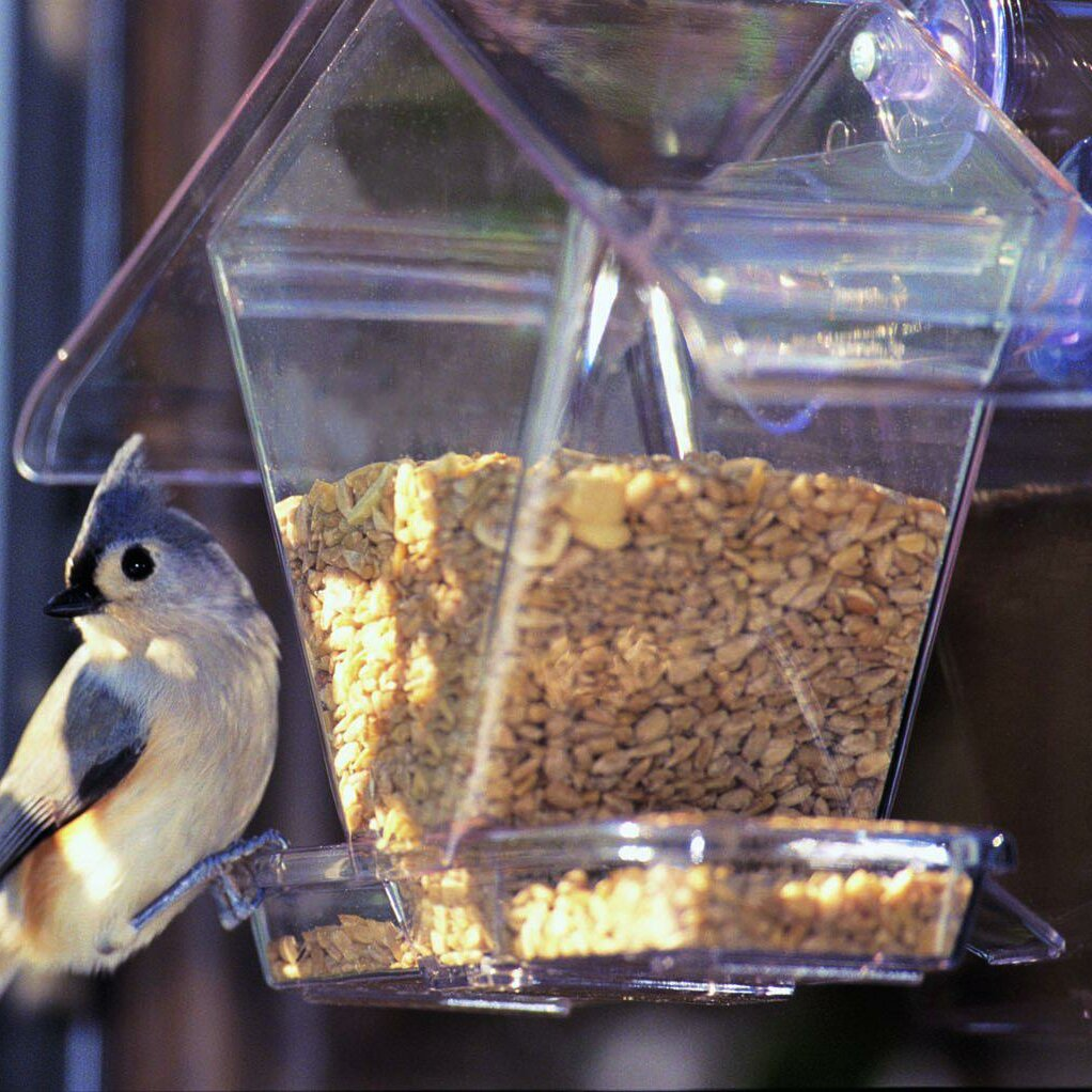 Aspects Inc Cafe Window Hopper Bird Feeder Reviews Wayfair
