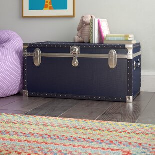 Affordable Price Adrian Storage Trunk By Viv + Rae
