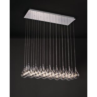 Neal 24 Light Cluster Pendant by Wade Logan