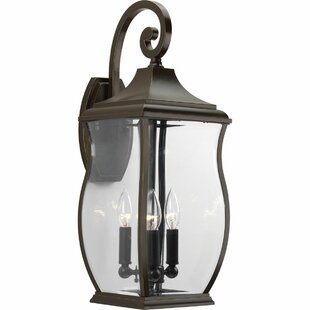 Darby Home Co El Paso 3-Light Outdoor Wall Lantern