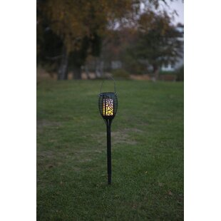 Haddon 25-Light LED Pathway Light By Marlow Home Co.