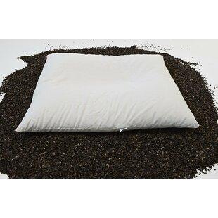 Latitude Run Imazio Buckwheat Pillow