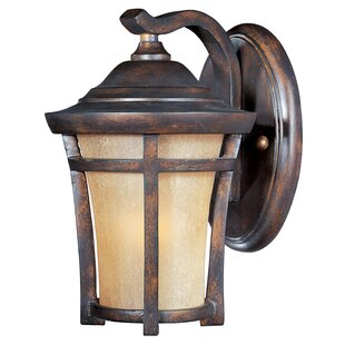 Darby Home Co Colton 1-Light Outdoor Wall Lantern