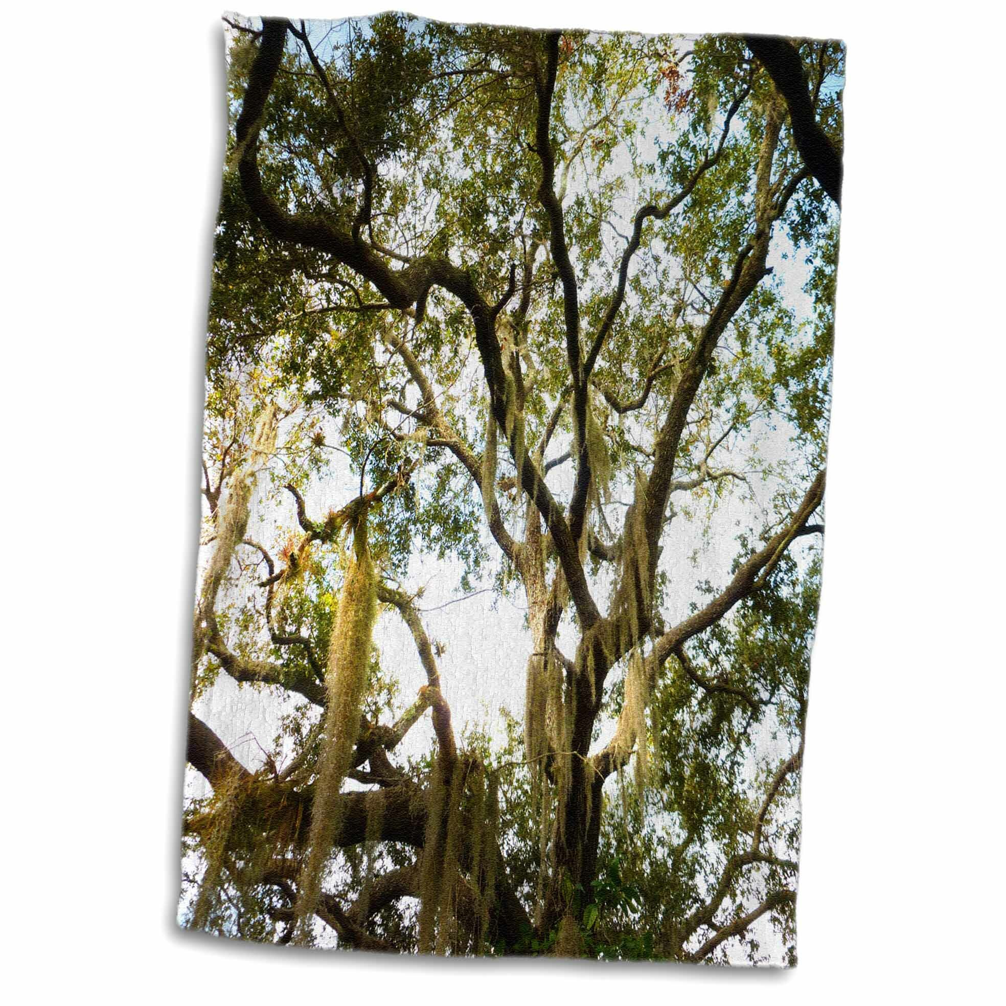 East Urban Home Hendrix Live Oak Old Tree Branches Spanish Moss 3d Hand Towel Wayfair