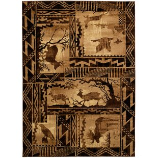 Reviews Iberide High-Quality Woven Ultra-Soft Southwest Wilderness Theme Berber Area Rug By Loon Peak