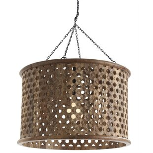 ARTERIORS Home 1-Light Dru..