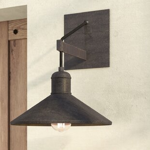 Purchase Baner 1-Light Barn Light By 17 Stories