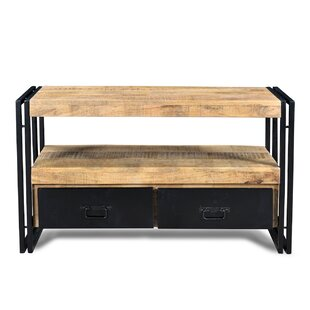 Lyra TV Stand for TVs up to 60 by Millwood Pines