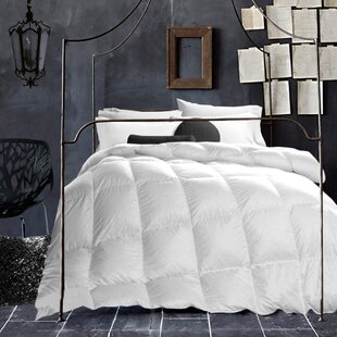 Duvet Insert by Alwyn Home Coupon