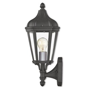 DeMotte 1-Light Outdoor Wall Lantern