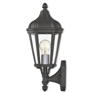 DeMotte 1-Light Outdoor Wall Lantern