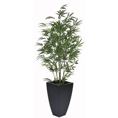 Bamboo Floor Plant in Planter House of Silk Flowers Inc.