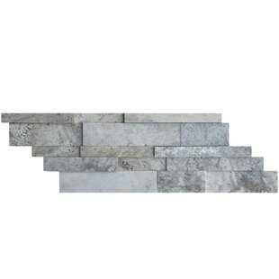 Honed Natural Stone Mosaic Tile in Silver