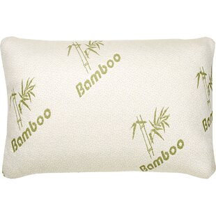 Hypoallergenic Rayon from Bamboo Memory Foam Pillow (Set of 2)