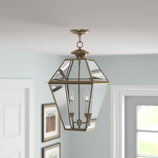 Orchard Lane Outdoor Hanging Light