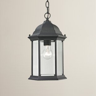 Price comparison Altagore 1-Light Outdoor Hanging Lantern By Charlton Home