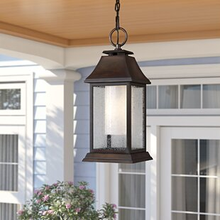 Sol 72 Outdoor Roseman 1-Light Outdoor Hanging Lantern