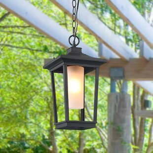 Winston Porter Barlow Transitional 1-Light Outdoor Hanging Lantern