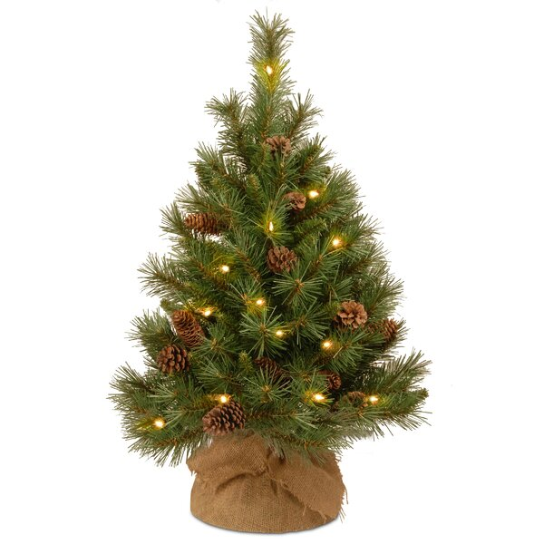 - Battery Operated Mini Christmas Tree Wayfair