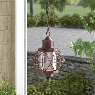 Buying Catt 1-Light Outdoor Hanging Lantern By Gracie Oaks