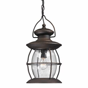 Reviews Surana 1-Light Outdoor Hanging Lantern By Longshore Tides