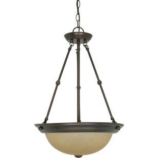 Fleur De Lis Living Deena 3-Light Bowl Pendant