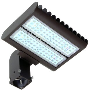 Morris Products 120-Light LED Flood Light