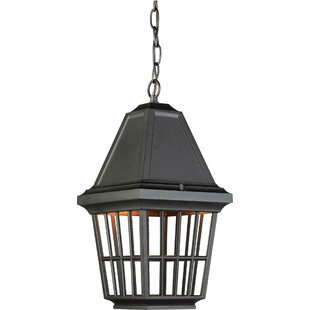 August Grove Verwood 1-Light Outdoor Hanging Lantern