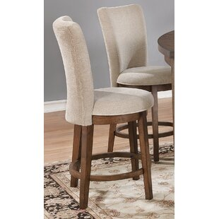 Bloomsbury Market Burcott Dining Chair (Set of 2)