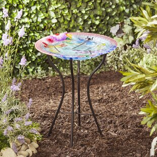 Dotan Bird Bath By Sol 72 Outdoor