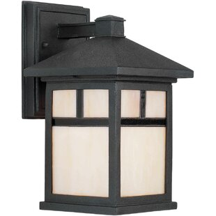 Burtundy 1-Light Outdoor Wall Lantern