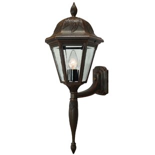 Floral 1-Light Outdoor Sconce by Special ..