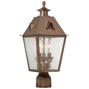 Best Reviews Meriline Outdoor 3-Light Lantern Head By Darby Home Co