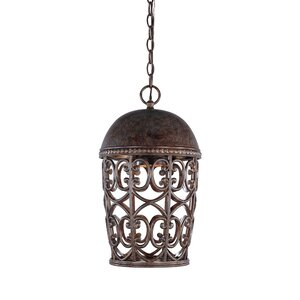 Claverack 1-Light Outdoor Pendant