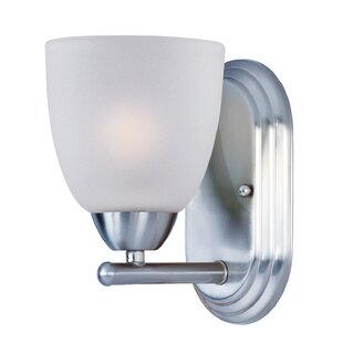 Andover Mills Hayden 1-Light Frosted Bath Sconce