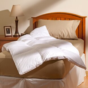 AllerEase Allergy Protection Cotton Fiber Bed