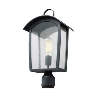 Gracie Oaks Lency 1-Light Lantern Head