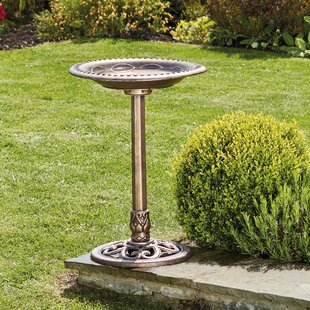 Touchet Bird Bath By Sol 72 Outdoor