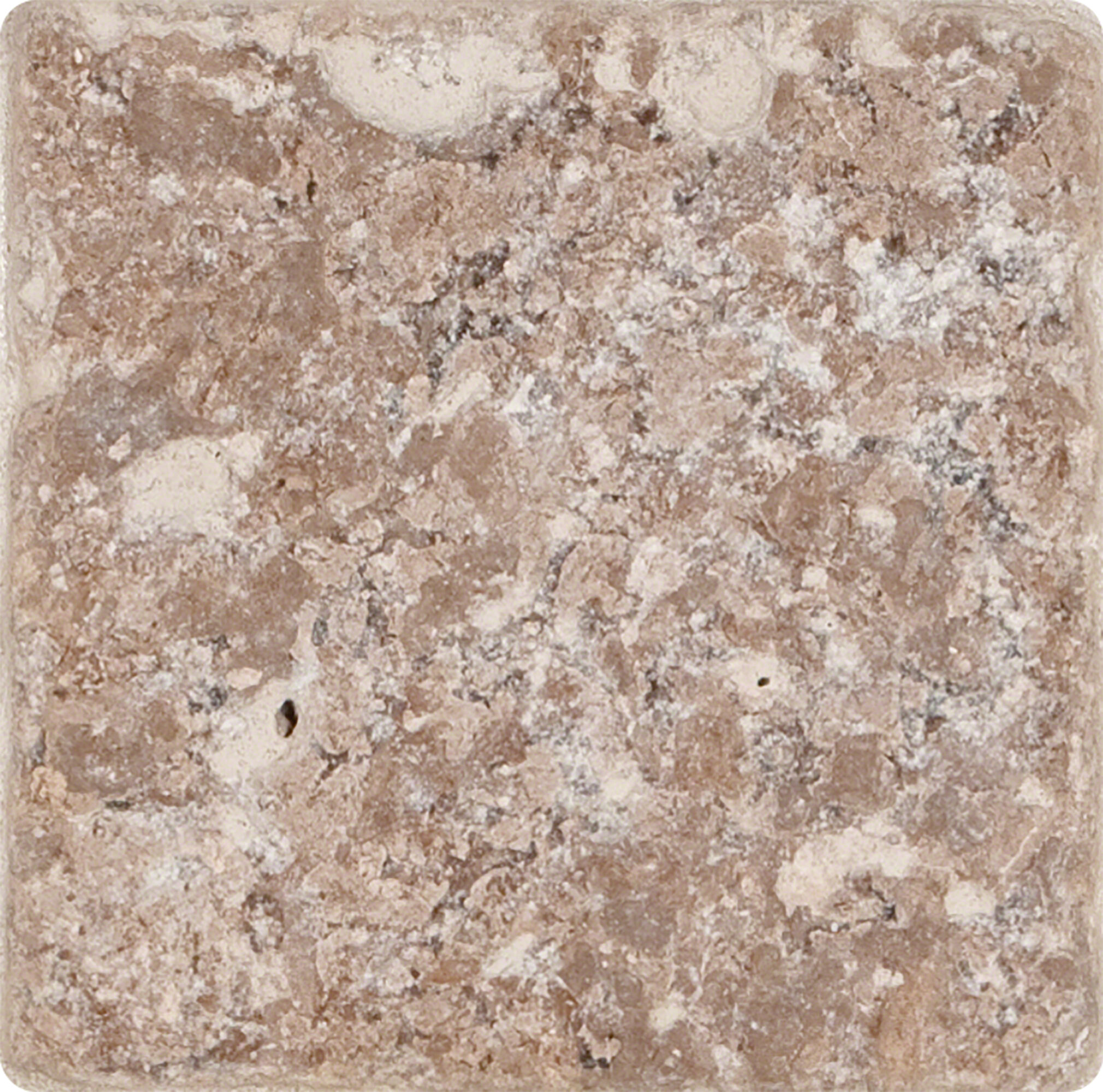 Msi 6 X 6 Travertine Field Tile In Tumbled Brown Reviews Wayfair