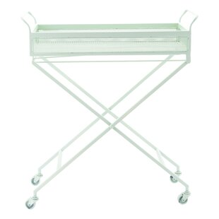 Latitude Run Sarver Mint Bar Cart