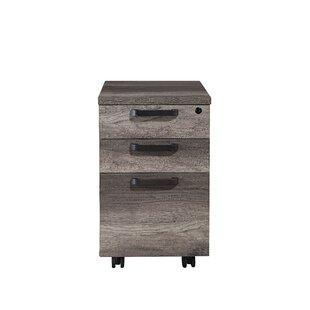 Arkin 3-Drawer Mobile Vertical Filing Cabinet