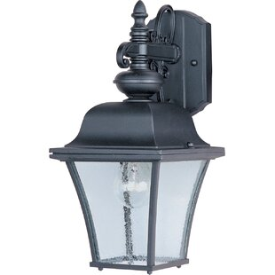 Affordable Price Mesa 1-Light Outdoor Wall Lantern By Alcott Hill