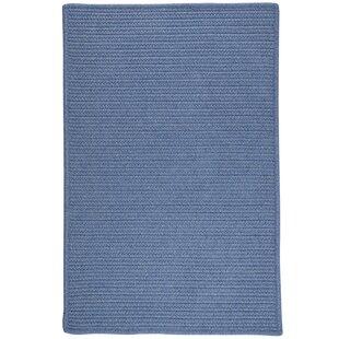 Hopseed Hand-Woven Blue Indoor/Outdoor Area Rug