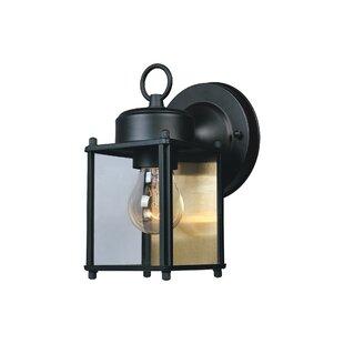Slusser 1-Light Outdoor Wall Lantern