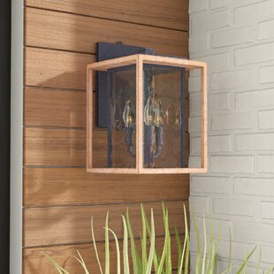 Brandie 3-Light Metal Outdoor Wall Lantern
