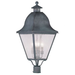 Natalie Outdoor Post Lantern By Darby Home Co