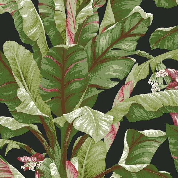 Wallpaper Modern Leaves Leaf Vine Stripe Black White on Pearl Background